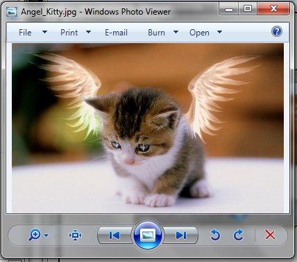 winremote-image-viewer