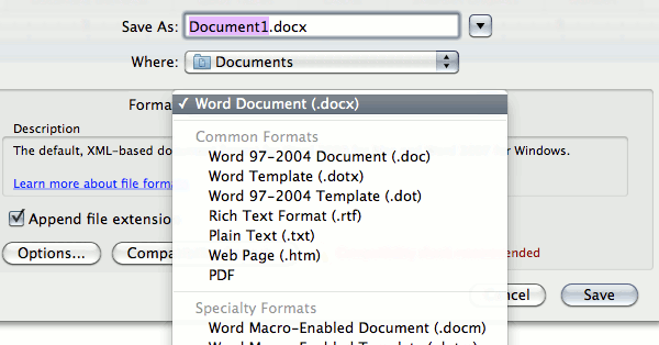 word-file-format-options