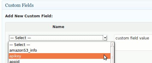 wp-custom-fields