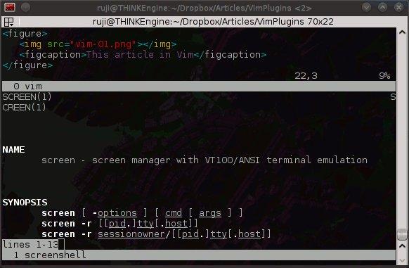 Vim plugins: Screen