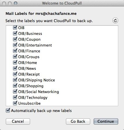 Choose the labels to backup in your Gmail or Google Apps account.