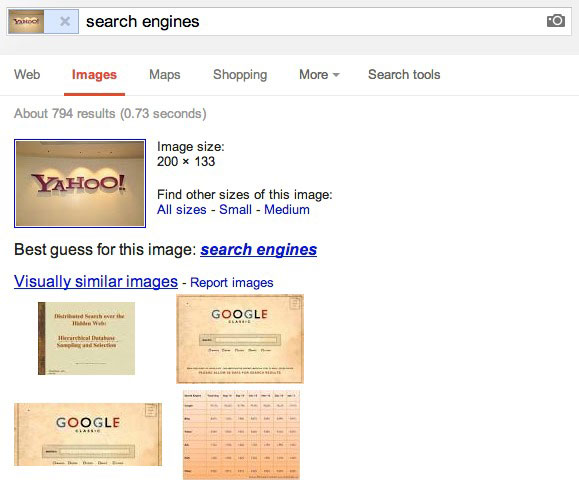 Google Search by Image results page