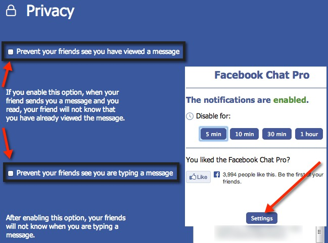 Facebook Chat Pro privacy settings.