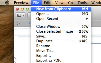 Transparencies-Preview-New-From-Clipboard