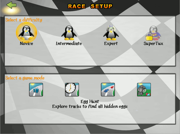 In single-player mode, you can play a normal race.