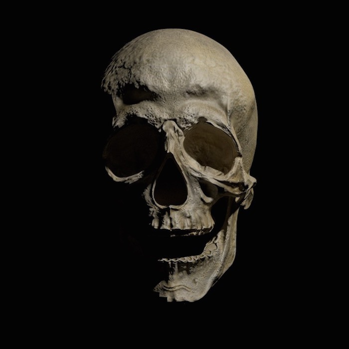 blender-lighting-mastery-skull-no-rim-no-fill