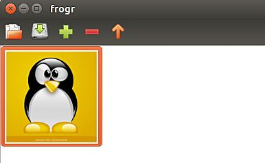 frogr-upload-photo