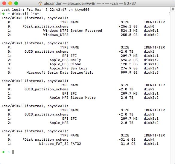 terminal-diskutil-list-result