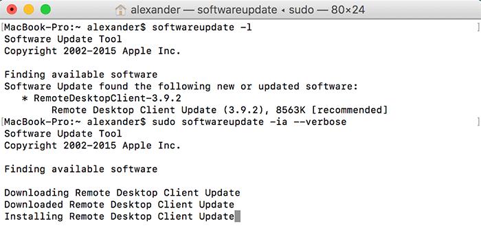 terminal-update-software-softwareupdate-6
