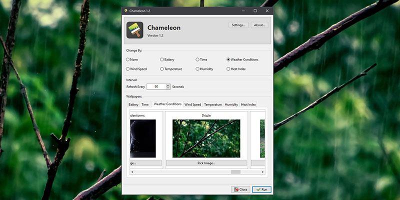 chameleon-2-featured